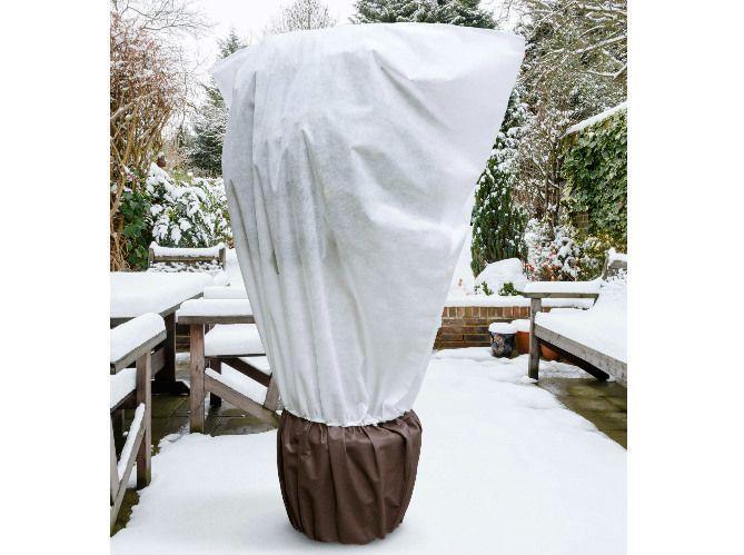3. Protéger les plantes avant l'hiver (image_2)