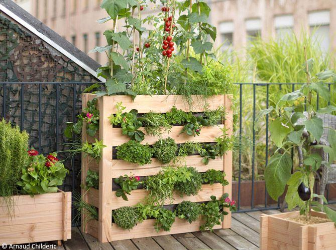 Du bois rien que du bois pour ma terrasse ! (image_2)
