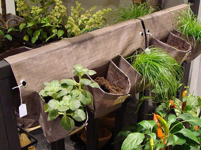 Il y a de la plante au balcon ! (image_2)