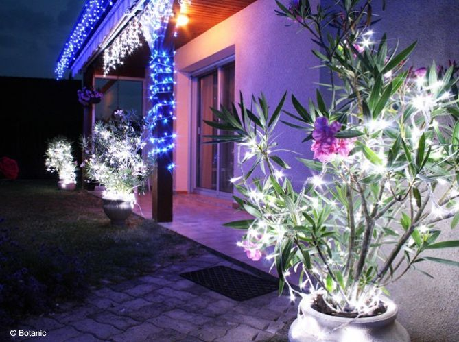 Je veux une déco de Noël pour mon jardin (image_2)