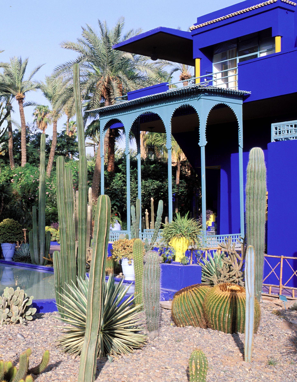 Le Jardin Majorelle et son bassin