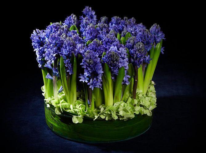 Le langage des fleurs : les grands classiques (image_5)