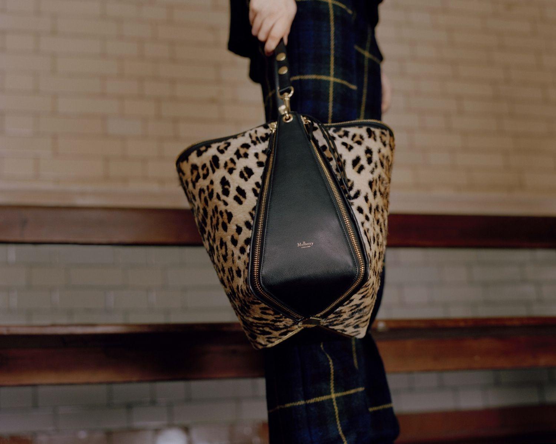 leopard camden