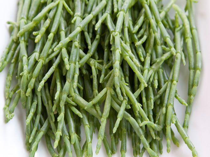 Les légumes feuilles oubliés (image_4)