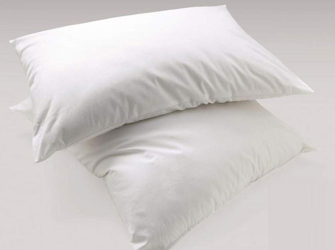 Les oreillers spéciaux (image_2)