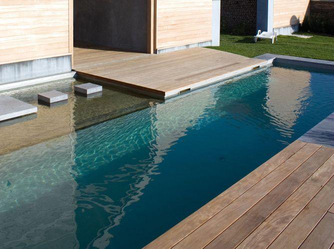 Les règles d'or pour construire une piscine naturelle (image_4)