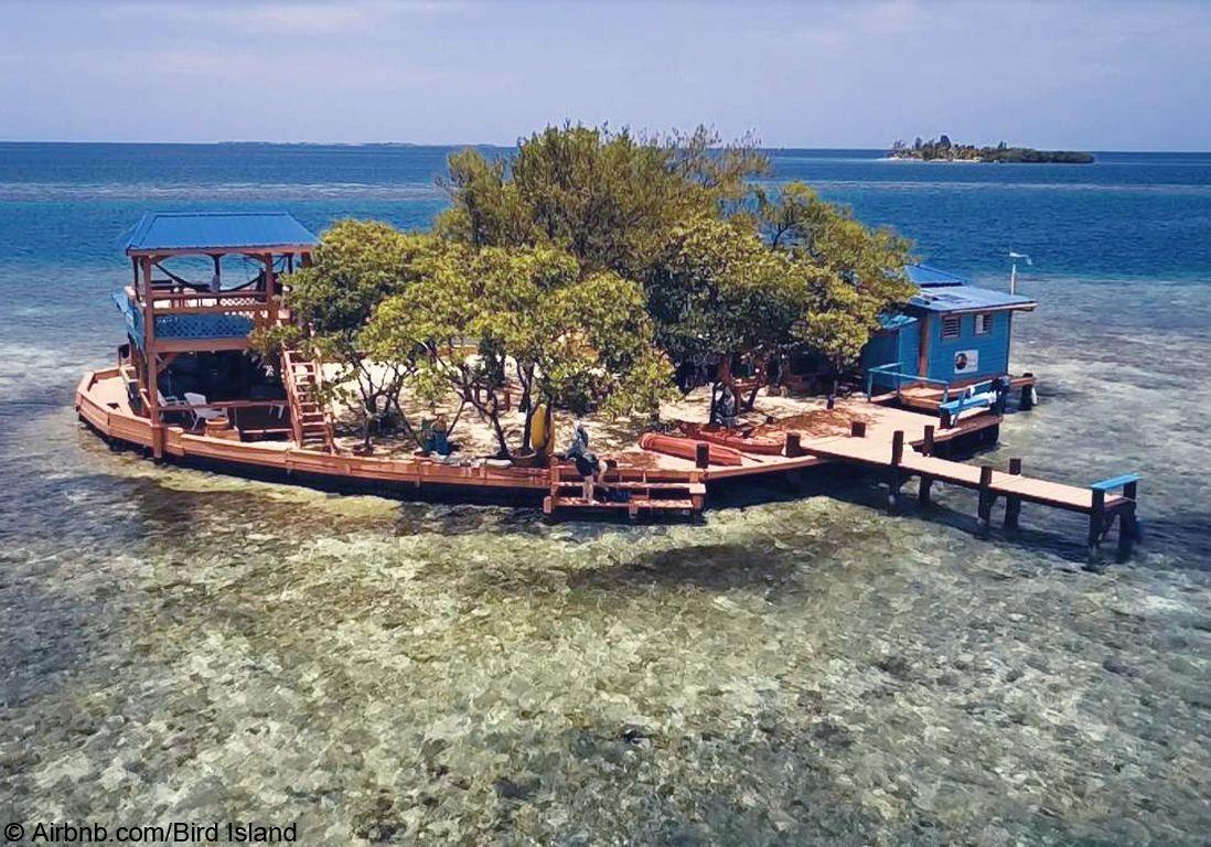 maison bird island
