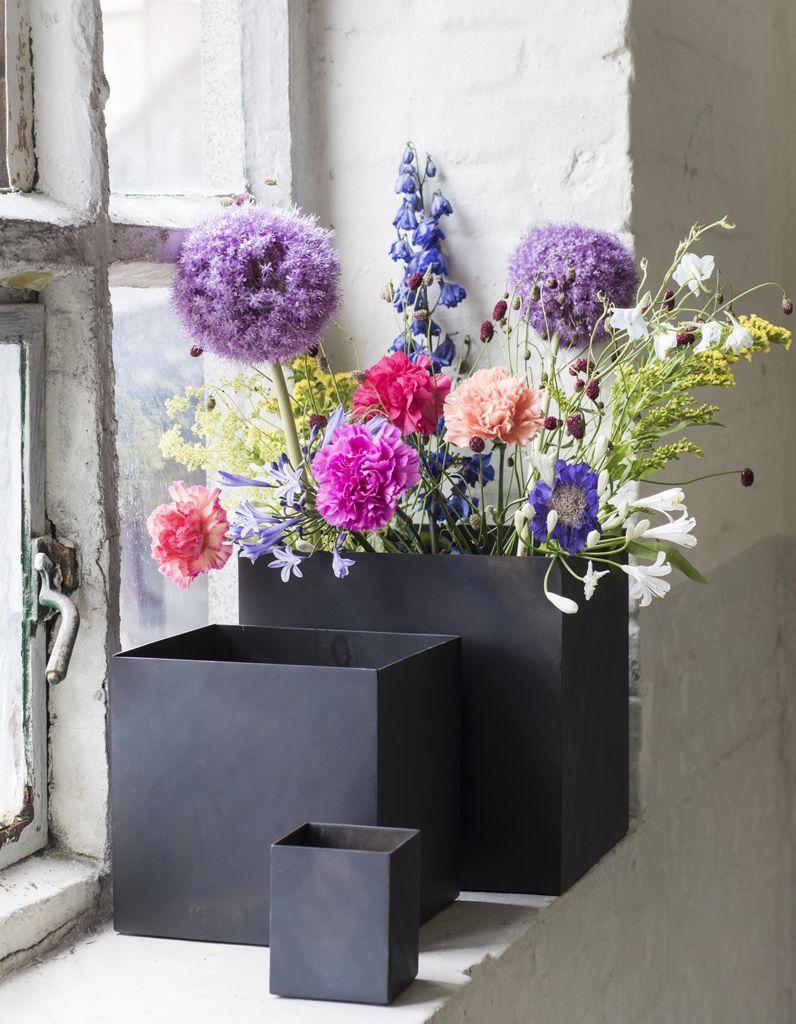 Parier sur encore plus de plantes et fleurs serax