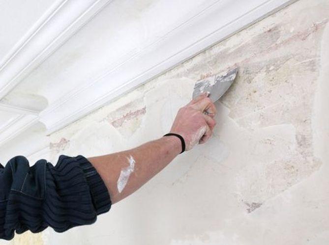 Peindre Un Mur Elle Décoration