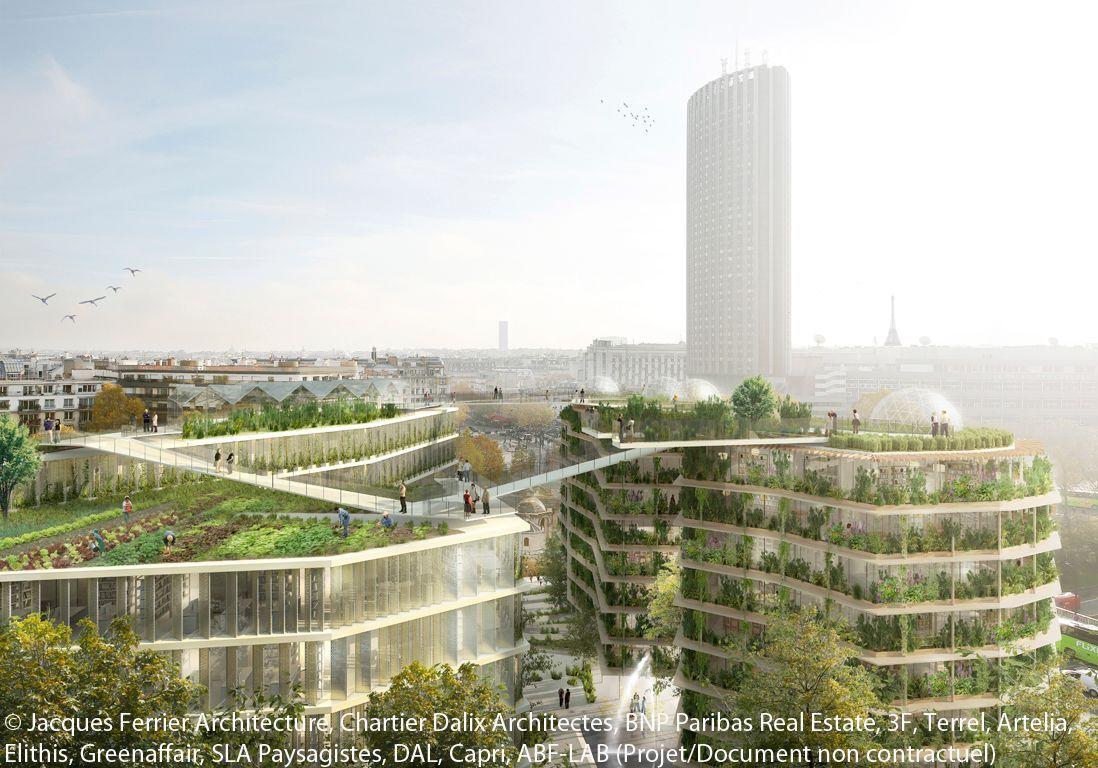 projet-paris-immeuble-pont-potager-partage