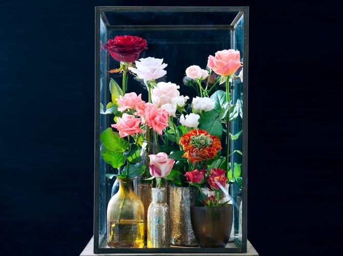 Quelle est la fleur préférée des français ? (image_2)
