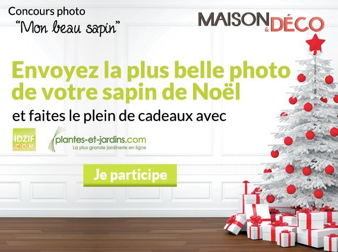 """Résultats du Concours photo """"Mon beau sapin"""" (image_1)"""