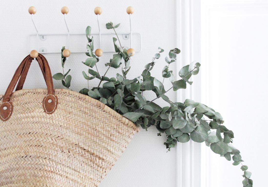 L'eucalyptus séché, la star végétale de l'hiver !
