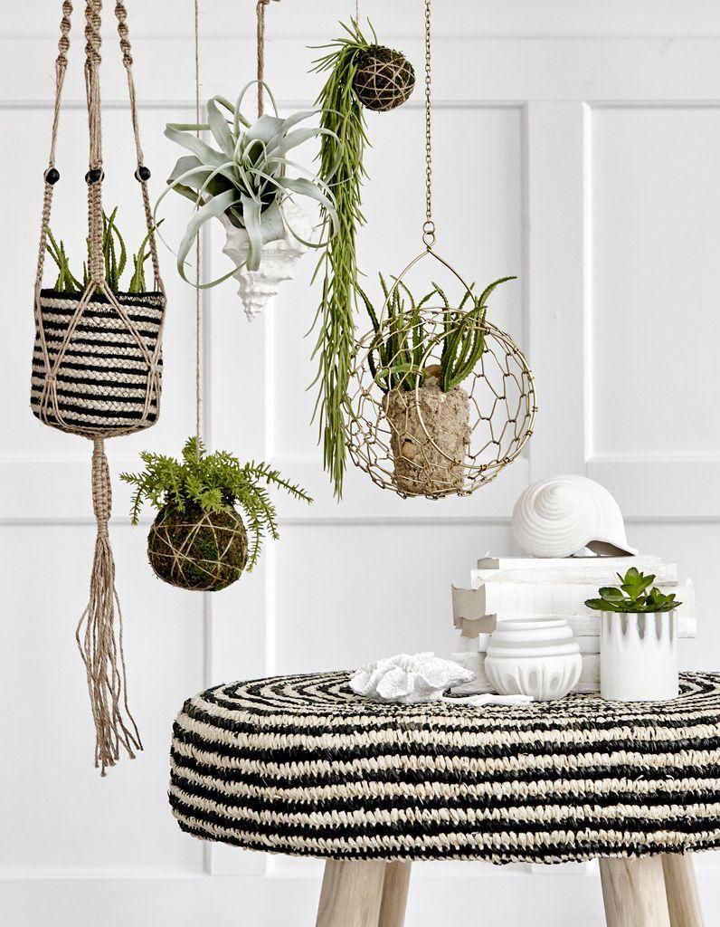 Décoration végétale : nos meilleures idées pour un intérieur so green