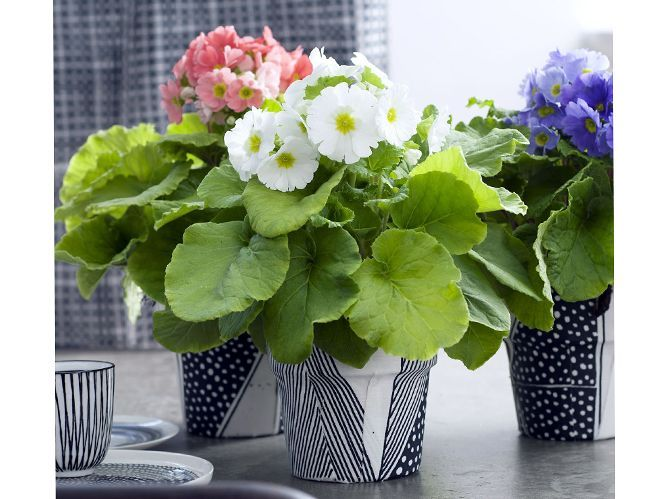 Customiser votre pot de fleurs (image_5)