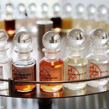 Dans le secret des parfumeurs