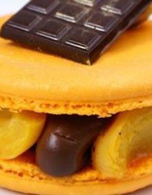 Macaron abricot chocolat