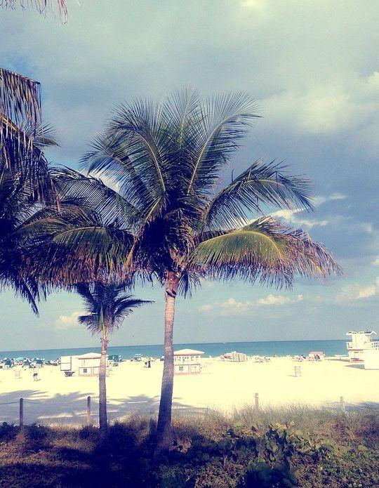 10 choses à faire à Miami !