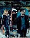 « Harry Potter 7 » déjà en tête du box office mondial