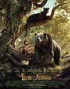 """""""Le livre de la jungle"""" : notre coup de coeur de la semaine !"""