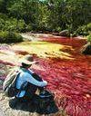 Et si vous alliez admirer cette rivière aux cinq couleurs ?