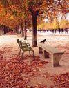 Que faire à Paris le week-end du 19, 20 et 21 octobre ?