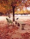 Que faire à Paris le week-end du 2, 3 et 4 novembre ?