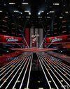 The Voice : Al.Hy, Stephan, Aude et Louis en finale !