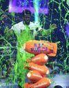 Nickelodeon Kids' Choice Awards : les idoles des jeunes réunies ce week-end !