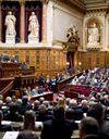 Mariage gay : le Sénat adopte le projet de loi