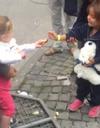 #PrêtàLiker : une petite fille allemande offre une friandise à une jeune réfugiée
