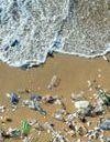 « Single Use Rebellion » : une campagne citoyenne pour chasser les plastiques à usage unique