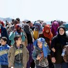 Comment Aider Les Migrants ?