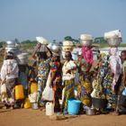 Des Centrafricaines Réfugiées Au Cameroun Racontent...
