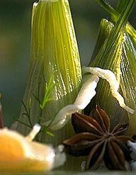 fera aux agrumes et fenouil