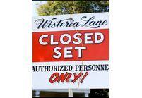 Deux nouvelles venues à Wisteria Lane !