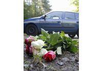 Tuerie de Chevaline : la rescapée de 7 ans est sortie du coma