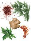 Herbes et Epices : Plus de saveurs moins de calories