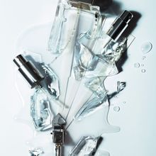 La Fin Des Parfums Cultes ?