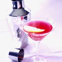 Recettes Cocktails Au Martini