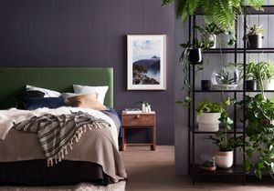 comment entretenir un bananier elle d coration. Black Bedroom Furniture Sets. Home Design Ideas