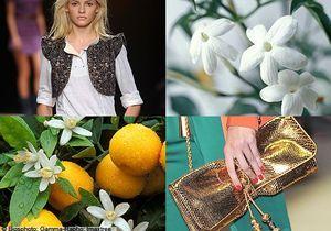 Parfums : 3 fragrances d'été