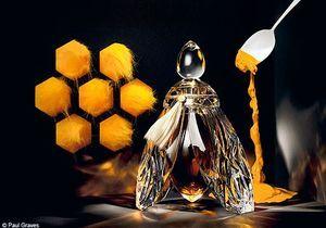 Parfums et contes de fées
