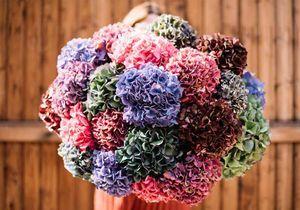 Comment composer un bouquet avec des hortensias séchés ?