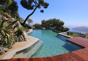 Idée déco : les plantes exotiques autour de la piscine