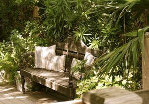 Quelles plantes choisir pour un jardin tropical ?