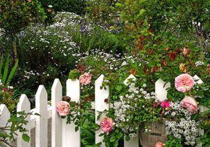 On s'inspire des jardins anglais