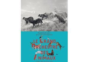"""Le grand orchestre des animaux"" à la Fondation Cartier pour l'art contemporain"