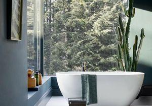 Comment les plantes vertes vont transformer la déco de votre salle de bain