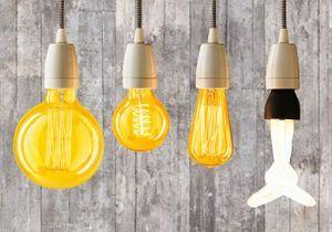 Lumière sur les ampoules déco